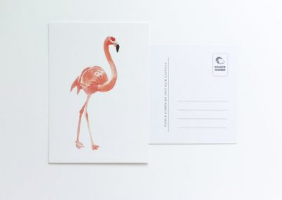 postcard flamingo eco
